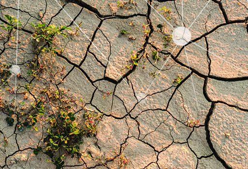 מים – משאב במחסור